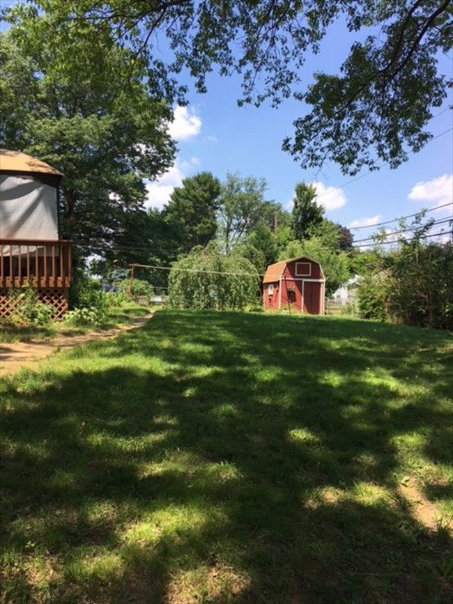 Room for rent in Woodlyn Avenue, Willow Grove - Suburbs (females only) - Image 2