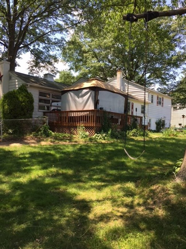 Room for rent in Woodlyn Avenue, Willow Grove - Suburbs (females only) - Image 4