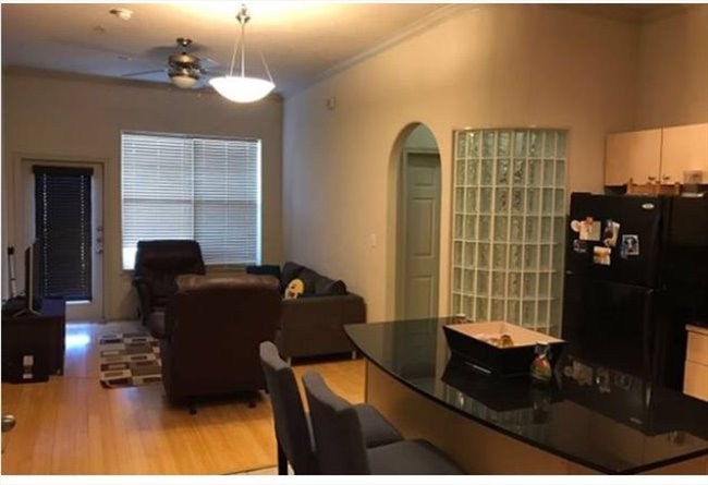Room for rent in East Street, Washington Ave./ Memorial Park - $1200 Room for Rent-  Washington Heights - Image 6