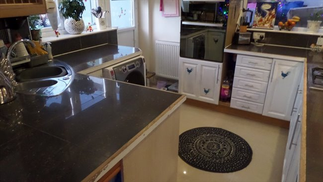 Room To Rent In Gilbert Avenue, Rugby   Double Bedroom With Own Bathroom    Image