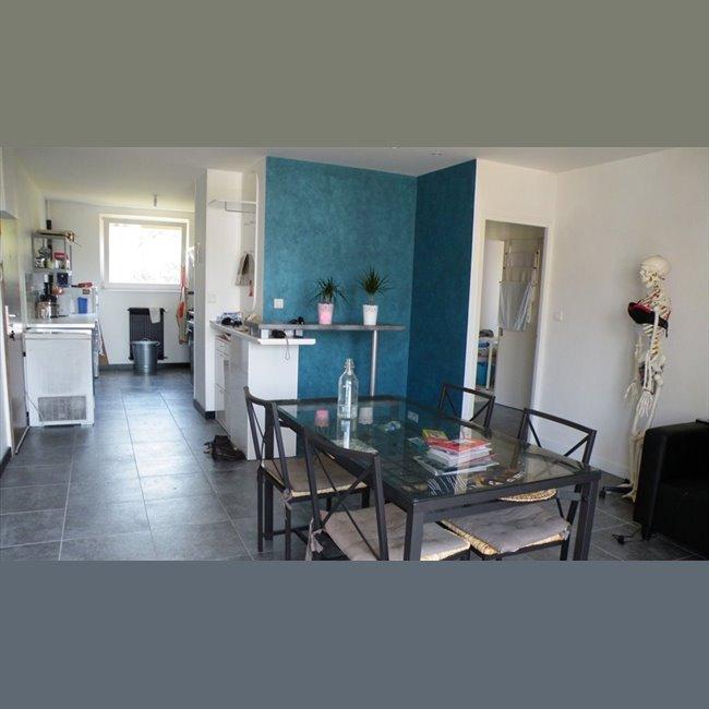 Colocation rue ronde quetigny chambre en colocation for Cuisine quetigny